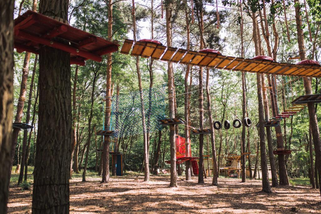 Park Linowy w Sadach Klemensa